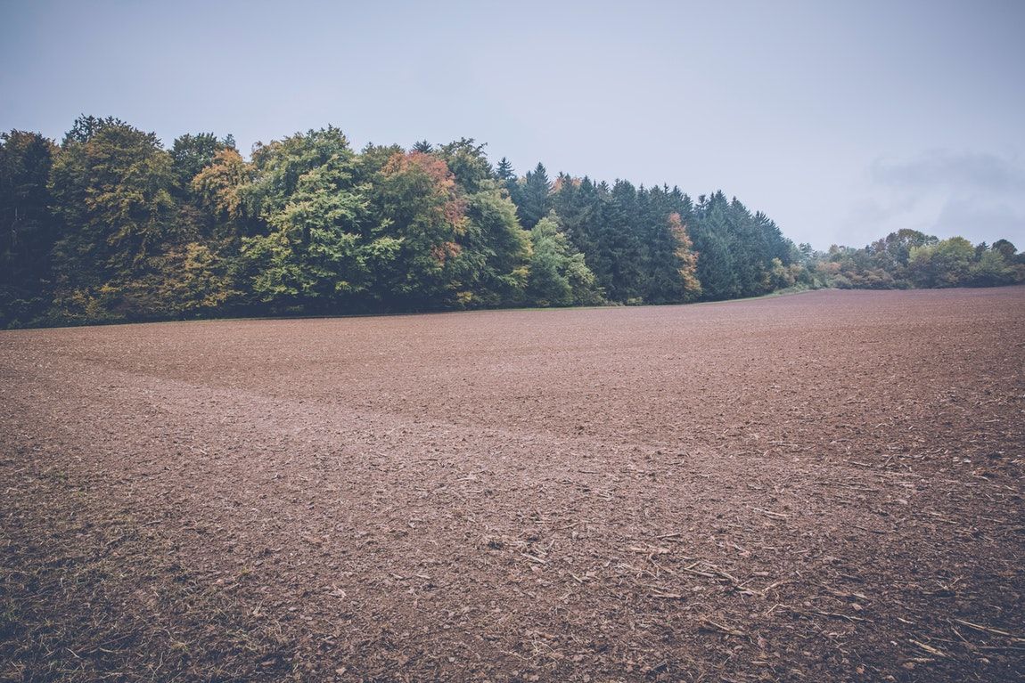 The Importance Of Purchasing And Preparing The Right Plot Of Land